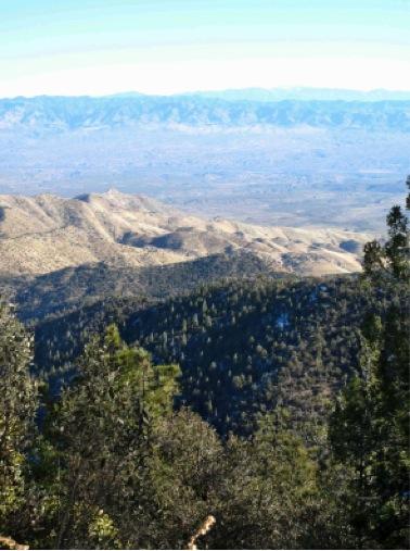 Image of desert landscape taken from Mt. Lemmon