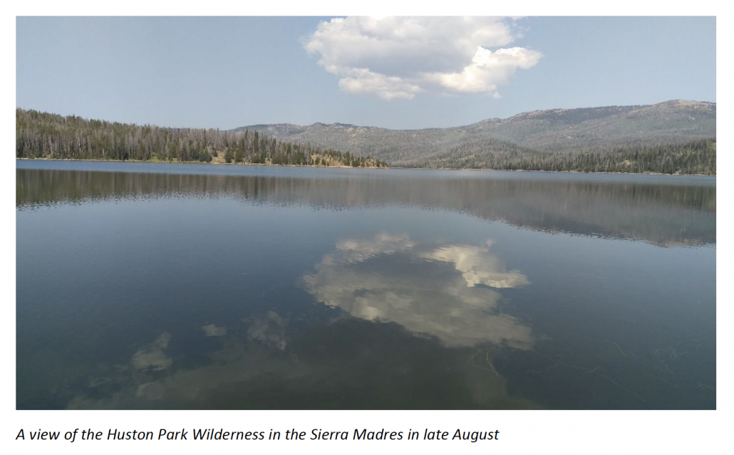 Huston Park Wilderness in the Sierra Madres.