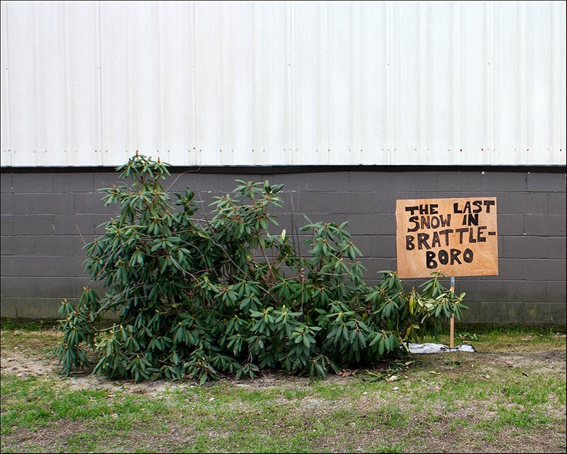 tree branches on ground with sign that reads
