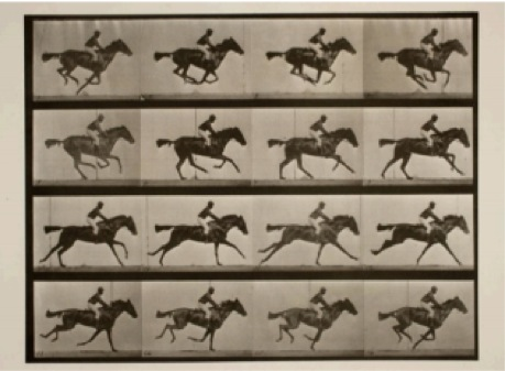Animation still of Horses Running